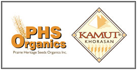 PHS Organic Kamut Khorasan